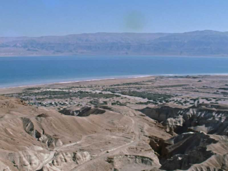 sponda viva deserto 5