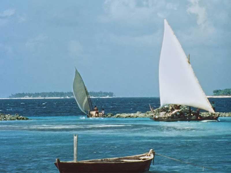 frame dal documentario Una Repubblica sull'oceano