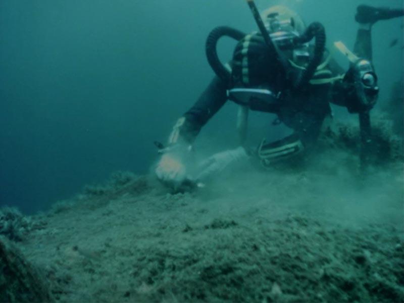 seconda immagine della spedizione subacquea di Angola sotto l'oceano