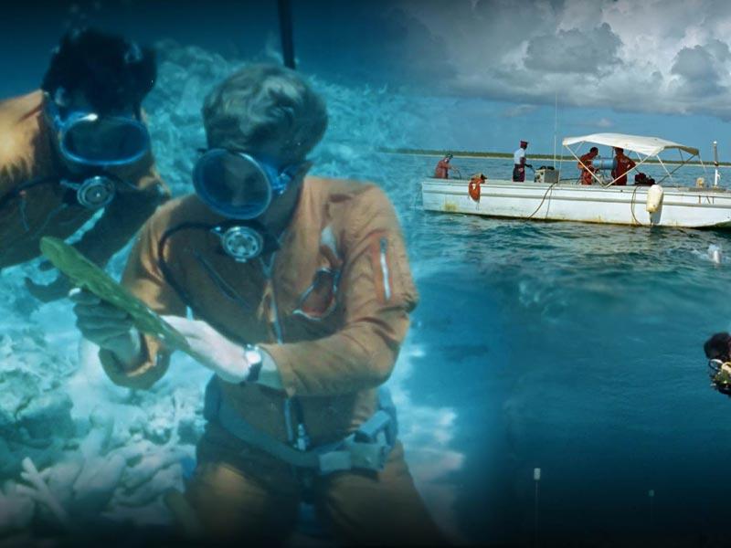 copertina del documentario operazione val lynden