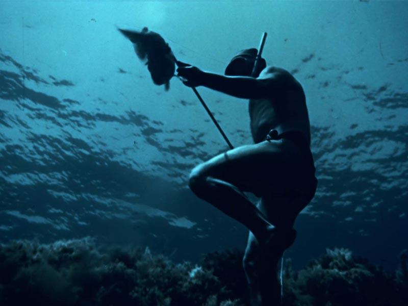 fermo immagine da sotto il mare di linosa