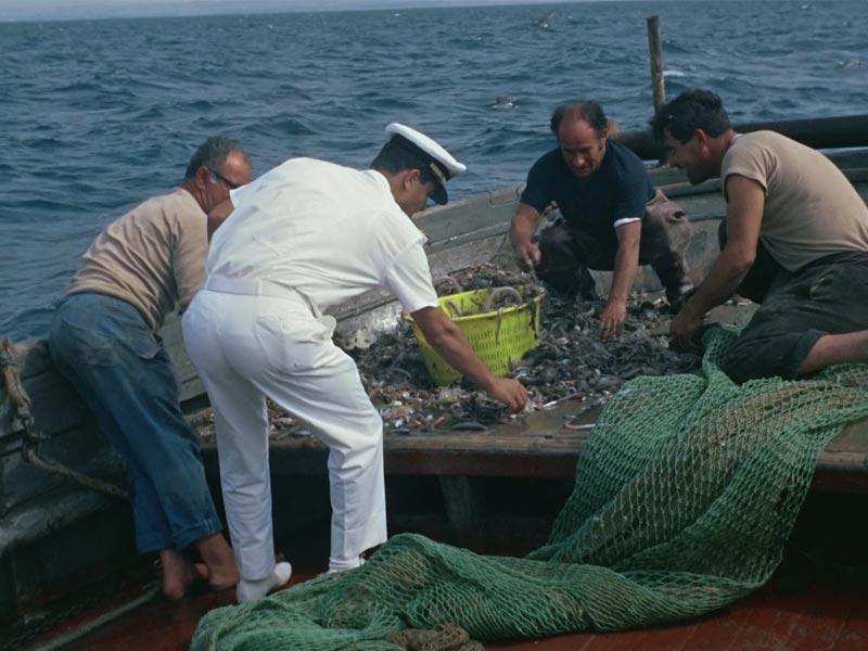 pesca-proibita-reti-traino