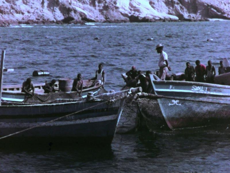 Zaire pesca